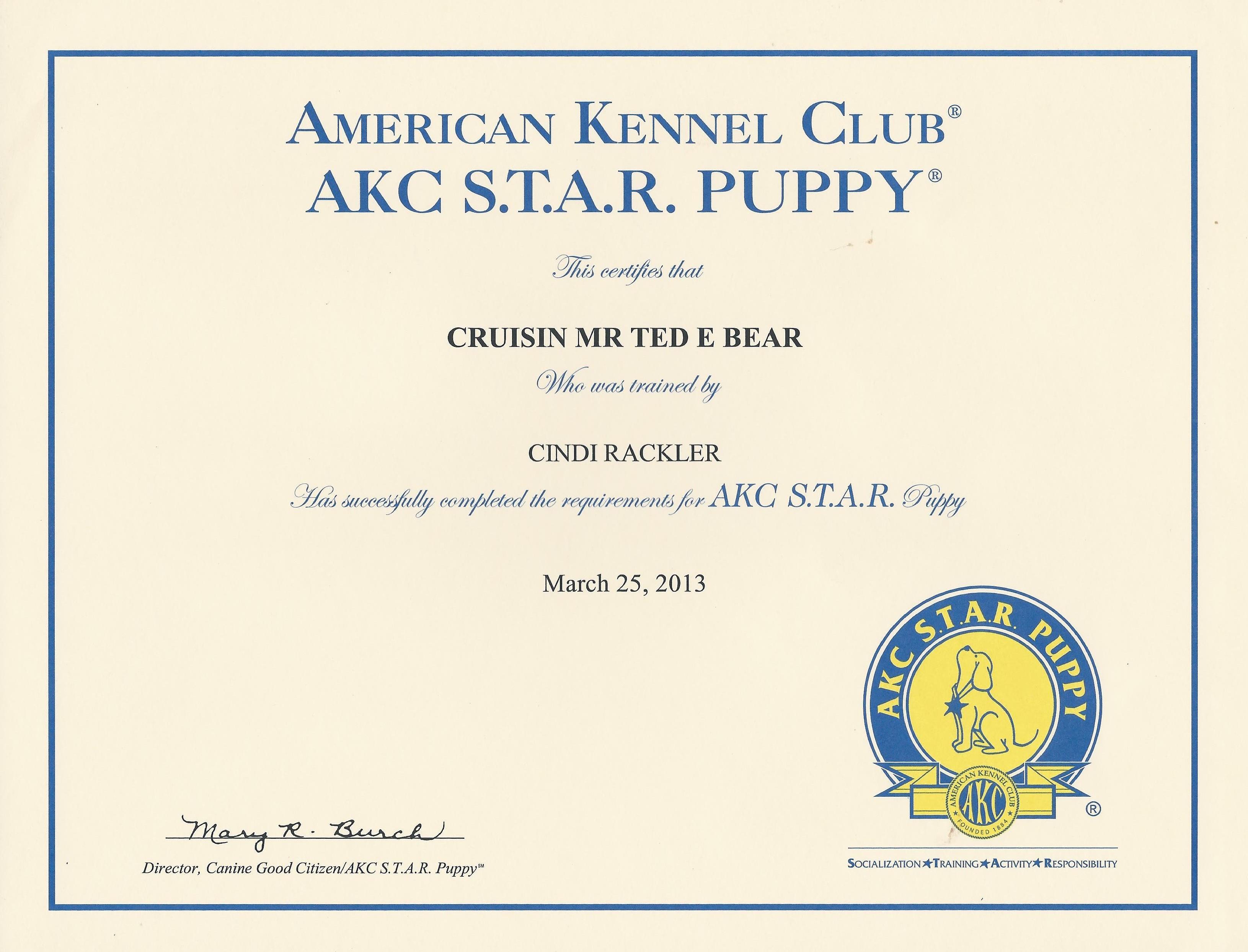 Teddy-STAR-Award2