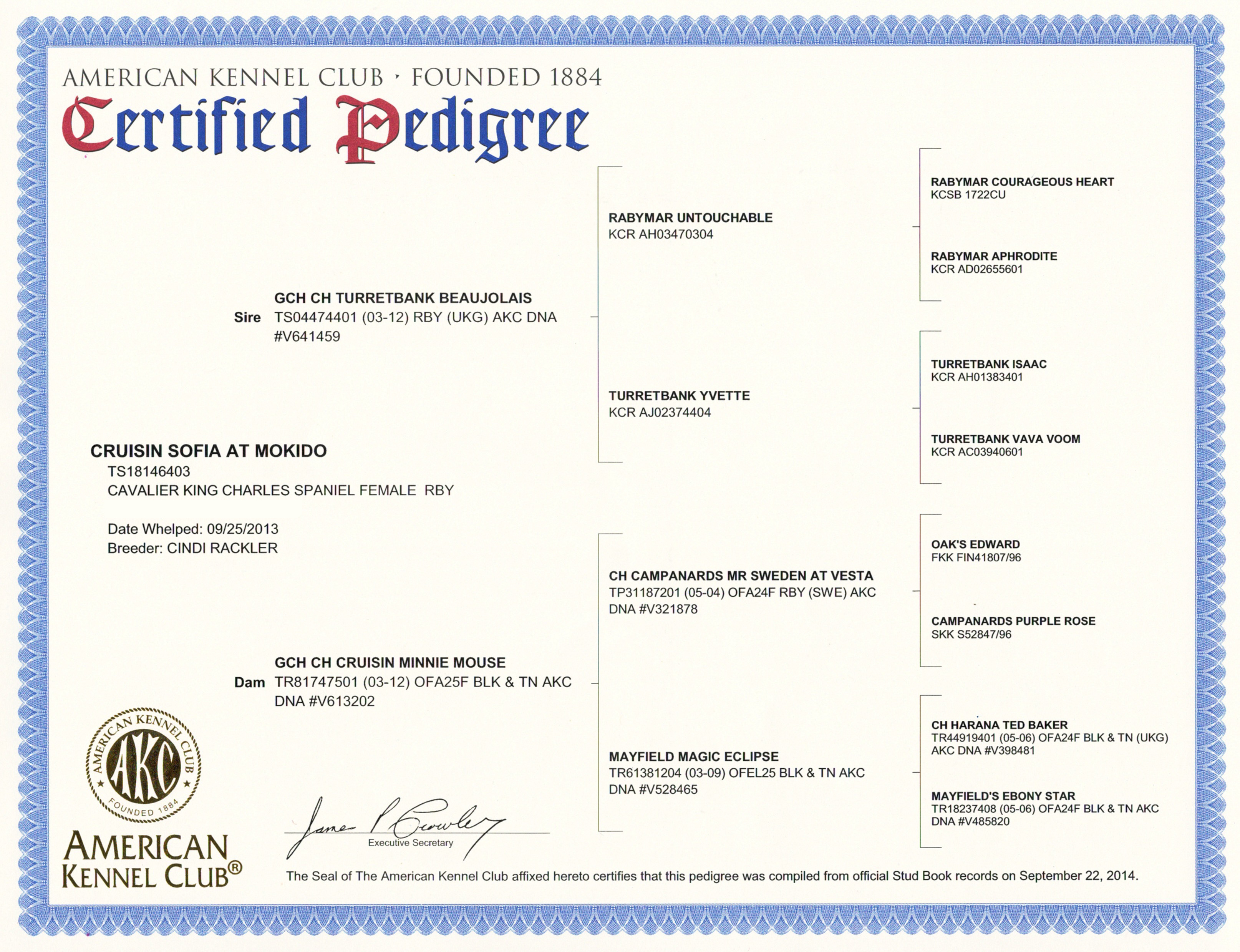 Sofia Certified Pedigree web