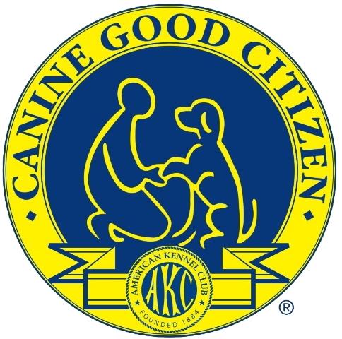 CGClogo